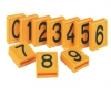 36196458